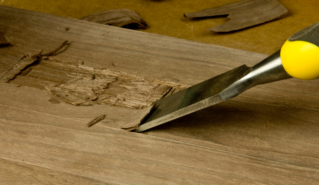 What are the different types of wood lathe chisels?